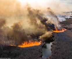 Pożar w Czarnobylu. Ogień wdziera się do strefy największego skażenia