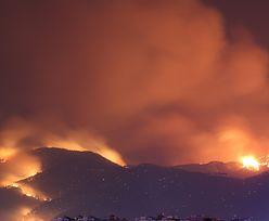Tragiczny pożar lasu w Chinach. Nie żyje 19 osób