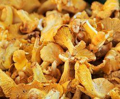 Napromieniowana żywność z Rosji. Francja znalazła ślady