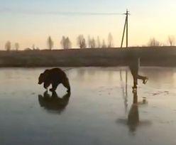 Tymczasem w Rosji. Niedźwiedzi zaprzęg na zamarzniętym jeziorze