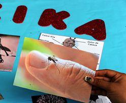Wirus Zika tuż za naszymi granicami!