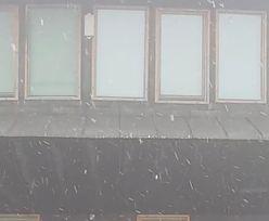 Zaczęło się lato. A na Śnieżce spadł śnieg
